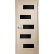dver-piana-blk-654